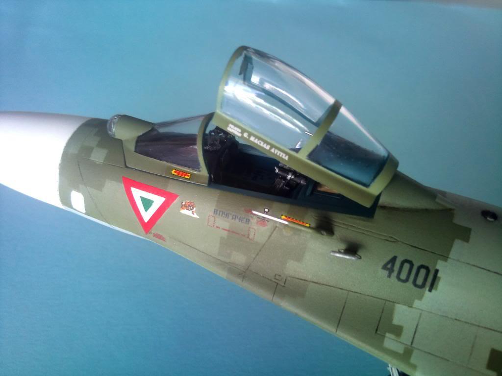 XXX Años del F-5 en México - Página 4 2012-11-30104729
