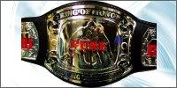 Title Belts ROHPureWrestling