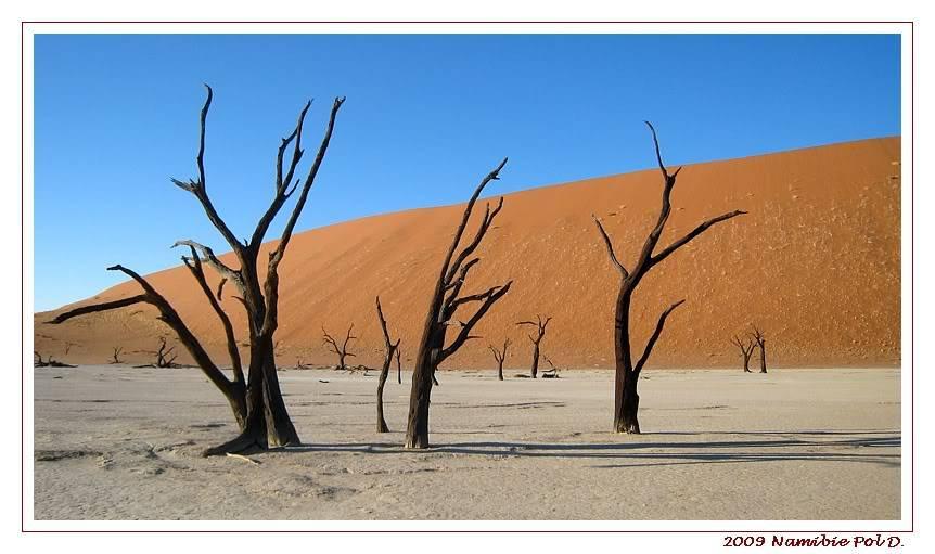 Aventures en Namibie Partie 1: De Windhoek à Sossusvlei 17-16h1313sesriem