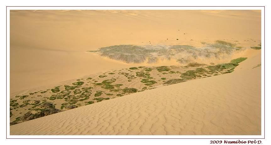 Aventures en Namibie Partie 2 : De Walvis Bay à Etosha 20-14h3254swakopmund