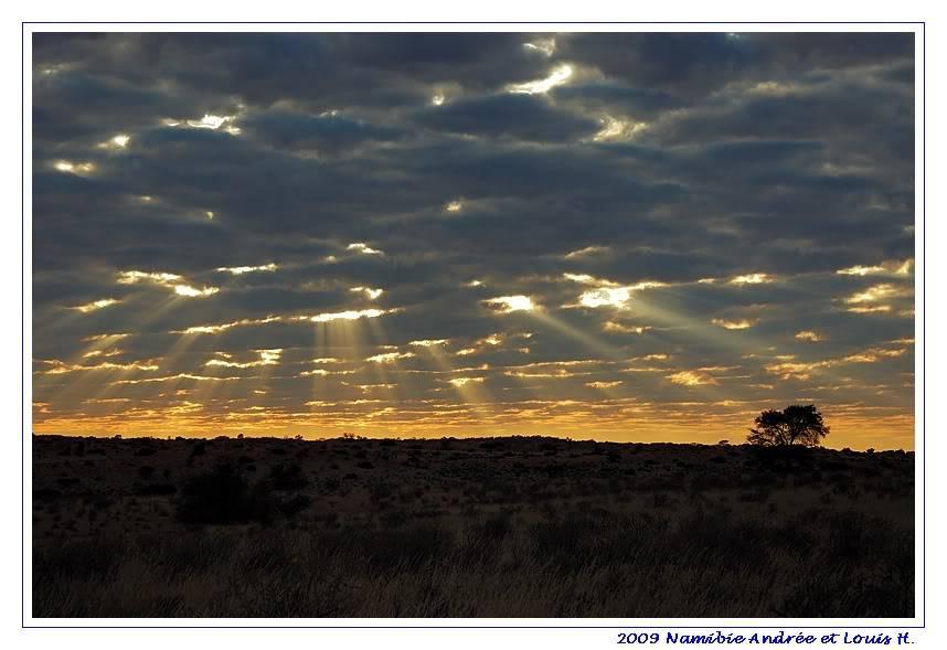 Aventures en Namibie Partie 1: De Windhoek à Sossusvlei DSC_9012