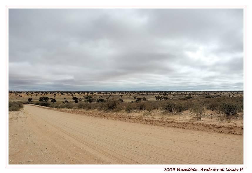 Aventures en Namibie Partie 1: De Windhoek à Sossusvlei DSC_9099