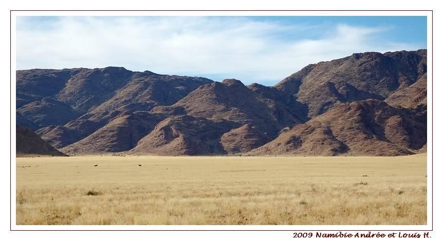 Aventures en Namibie Partie 1: De Windhoek à Sossusvlei DSC_9257