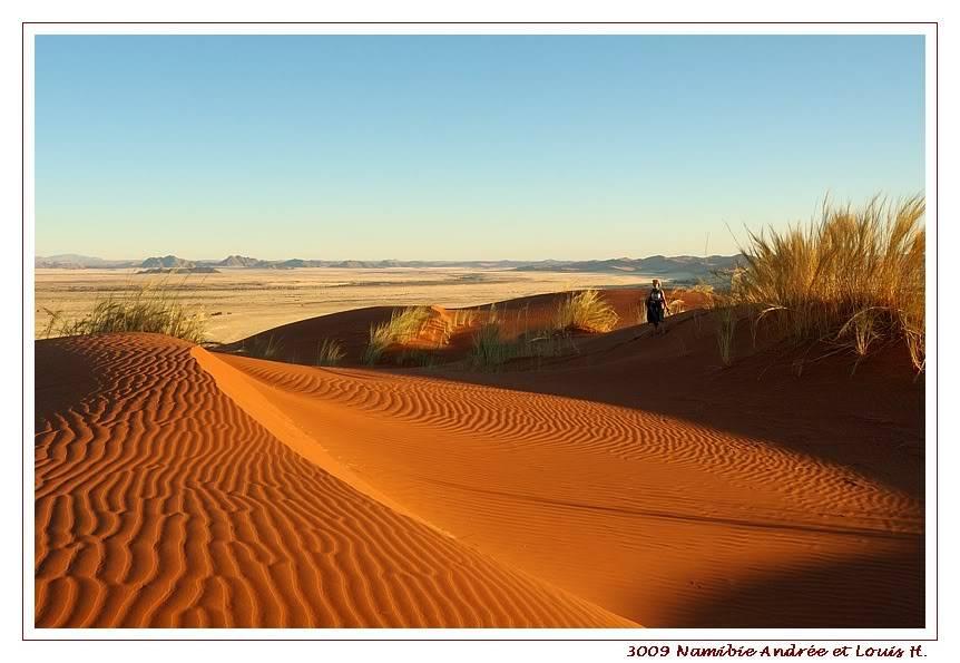 Aventures en Namibie Partie 1: De Windhoek à Sossusvlei DSC_9285