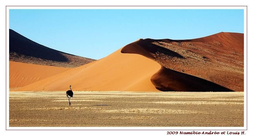 Aventures en Namibie Partie 1: De Windhoek à Sossusvlei DSC_9303