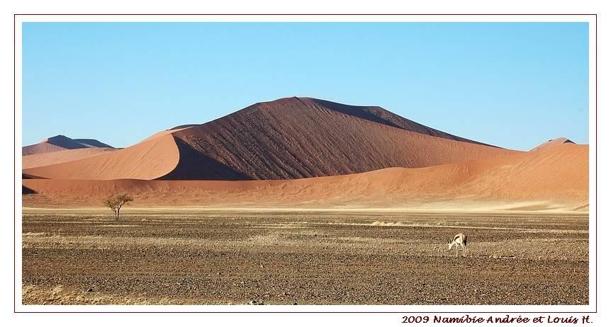 Aventures en Namibie Partie 1: De Windhoek à Sossusvlei DSC_93051