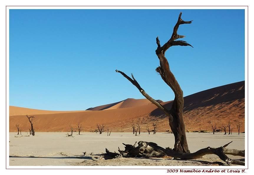 Aventures en Namibie Partie 1: De Windhoek à Sossusvlei DSC_9326