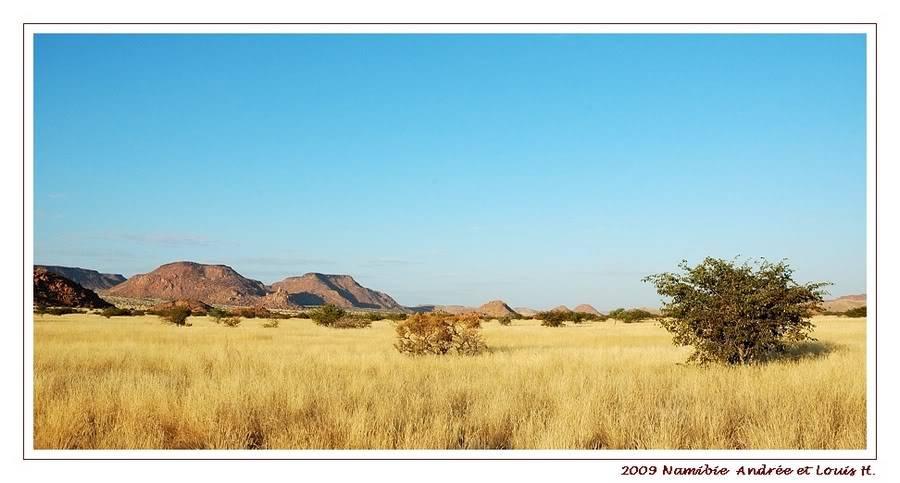 Aventures en Namibie Partie 2 : De Walvis Bay à Etosha DSC_9418PF
