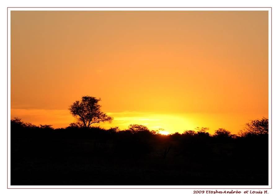 Aventures en Namibie Partie 2 : De Walvis Bay à Etosha DSC_9923PF