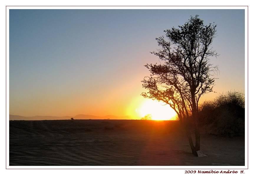 Aventures en Namibie Partie 1: De Windhoek à Sossusvlei IMG_0845-1