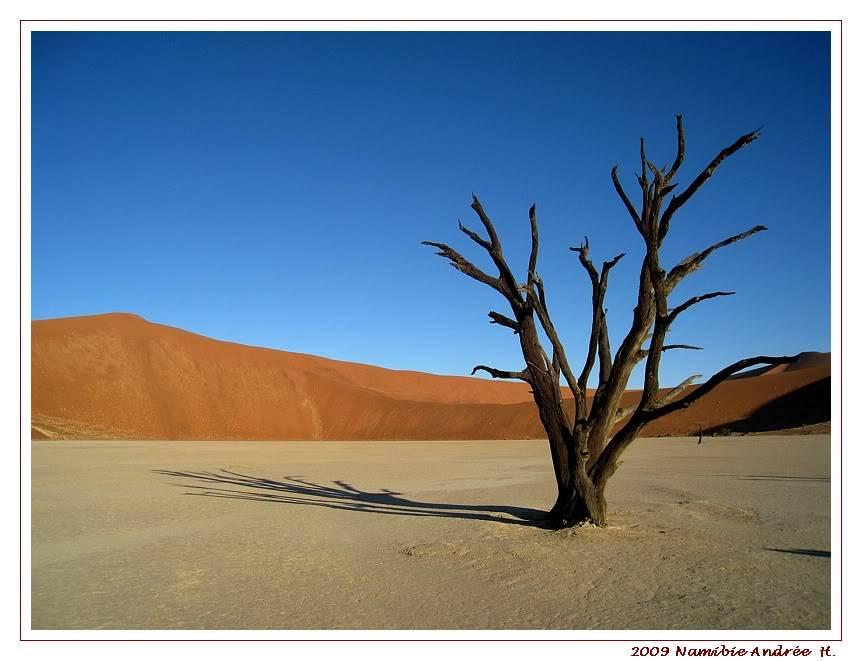 Aventures en Namibie Partie 1: De Windhoek à Sossusvlei IMG_0896