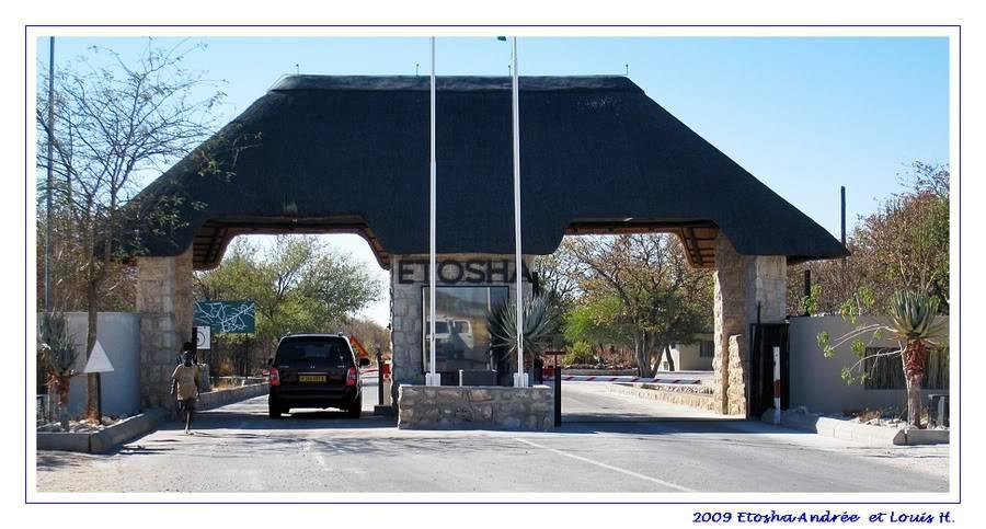 Aventures en Namibie Partie 2 : De Walvis Bay à Etosha IMG_1179PF