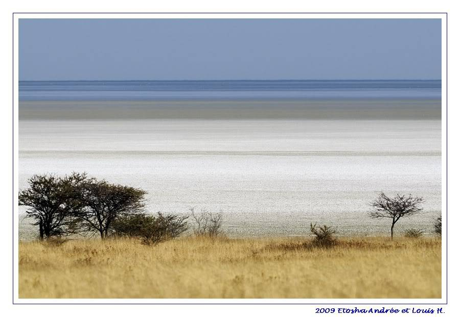 Aventures en Namibie Partie 2 : De Walvis Bay à Etosha _DSC6839pf