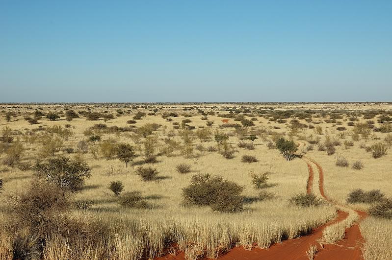Aventures en Namibie Partie 1: De Windhoek à Sossusvlei DSC_8970