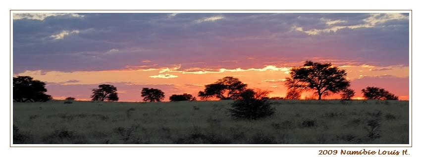 Aventures en Namibie Partie 1: De Windhoek à Sossusvlei DSC_9007pano800