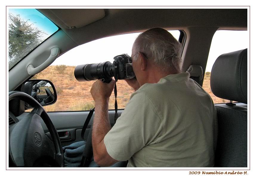 Aventures en Namibie Partie 1: De Windhoek à Sossusvlei IMG_0634Kgalagadi800