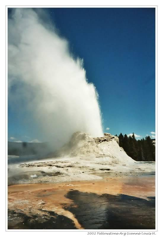 De Grand teton à Glacier en passant par Yellowstone: Partie 2 Yellowstone 029_262