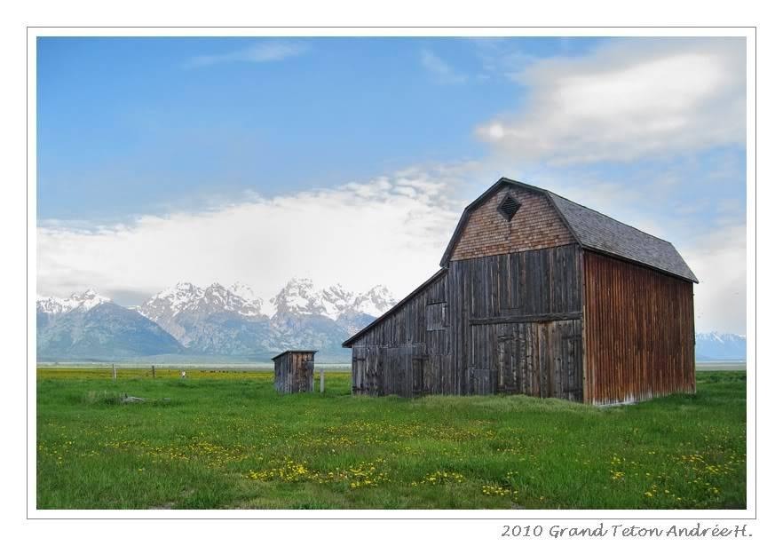 De Grand teton à Glacier en passant par Yellowstone: Partie 1 Grand Teton IMG_1849
