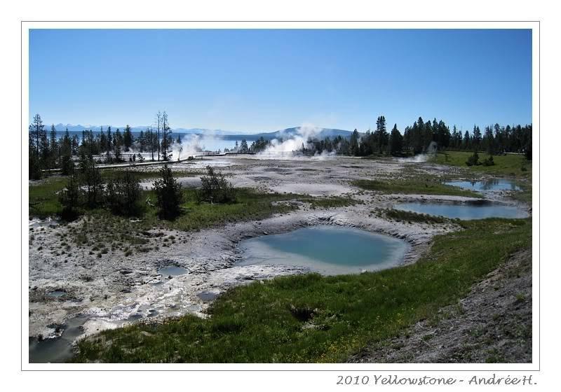 De Grand teton à Glacier en passant par Yellowstone: Partie 2 Yellowstone IMG_2071