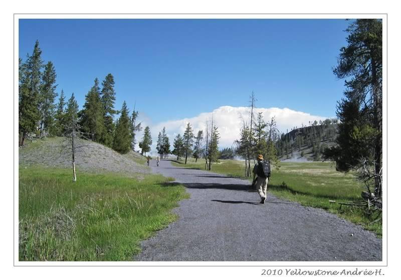 De Grand teton à Glacier en passant par Yellowstone: Partie 2 Yellowstone IMG_2284