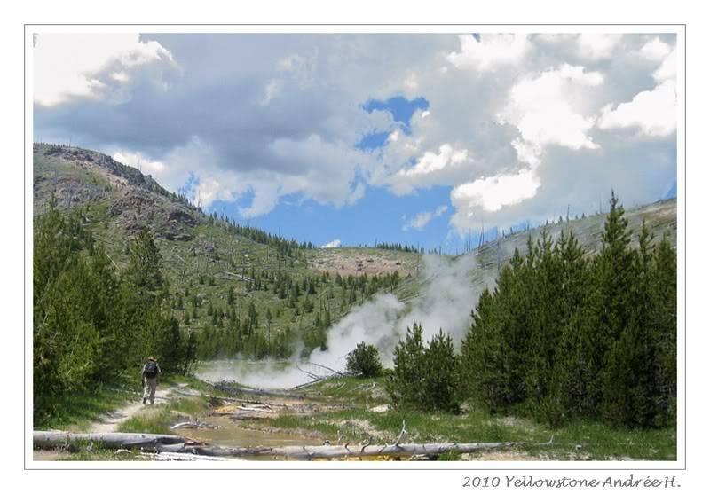 De Grand teton à Glacier en passant par Yellowstone: Partie 2 Yellowstone IMG_2312