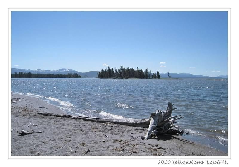 De Grand teton à Glacier en passant par Yellowstone: Partie 2 Yellowstone IMG_2356