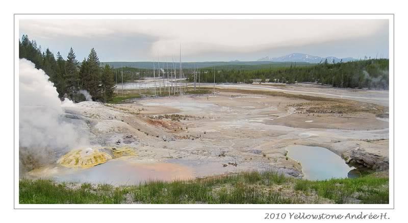 De Grand teton à Glacier en passant par Yellowstone: Partie 2 Yellowstone IMG_2573