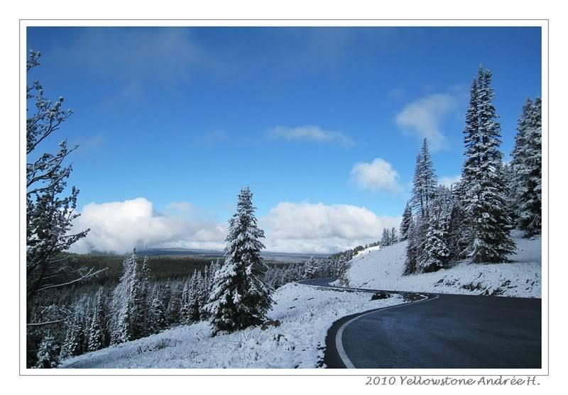 De Grand teton à Glacier en passant par Yellowstone: Partie 2 Yellowstone IMG_2605