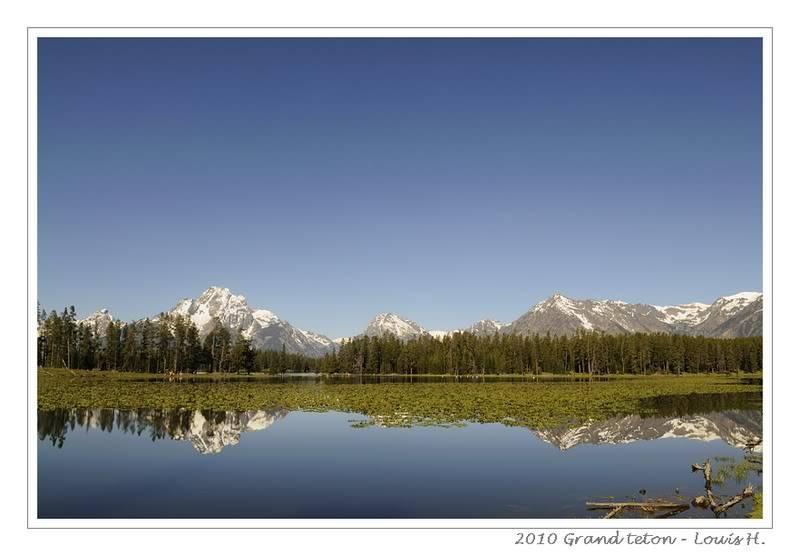 De Grand teton à Glacier en passant par Yellowstone: Partie 1 Grand Teton _DSC5848