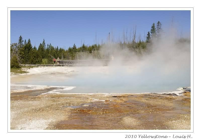 De Grand teton à Glacier en passant par Yellowstone: Partie 2 Yellowstone _DSC5885