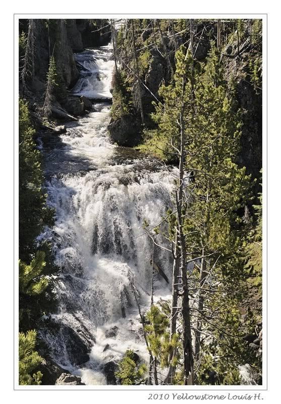 De Grand teton à Glacier en passant par Yellowstone: Partie 2 Yellowstone _DSC5897