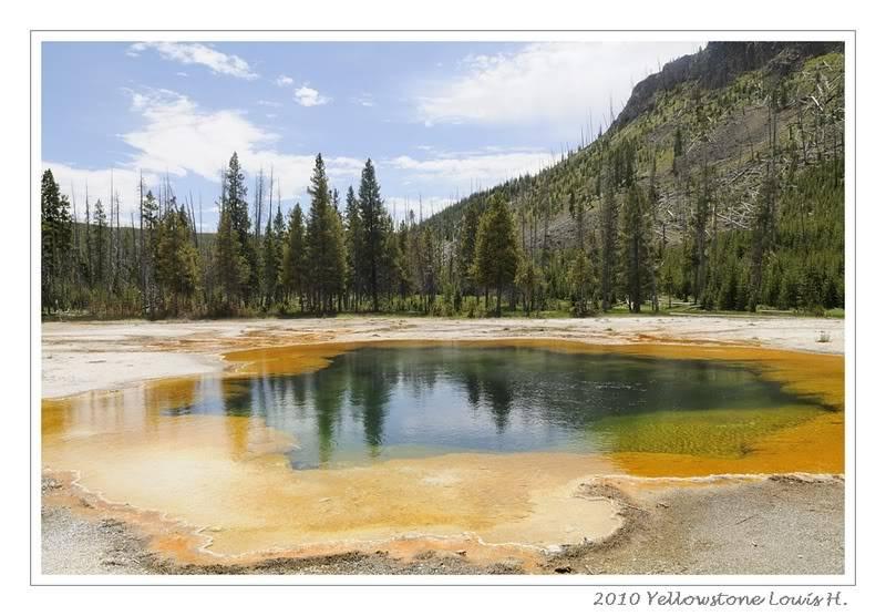 De Grand teton à Glacier en passant par Yellowstone: Partie 2 Yellowstone _DSC5908