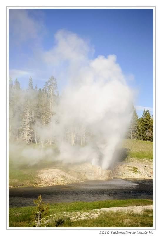 De Grand teton à Glacier en passant par Yellowstone: Partie 2 Yellowstone _DSC5978