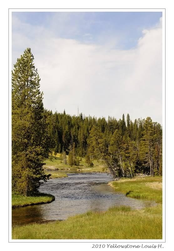 De Grand teton à Glacier en passant par Yellowstone: Partie 2 Yellowstone _DSC6015