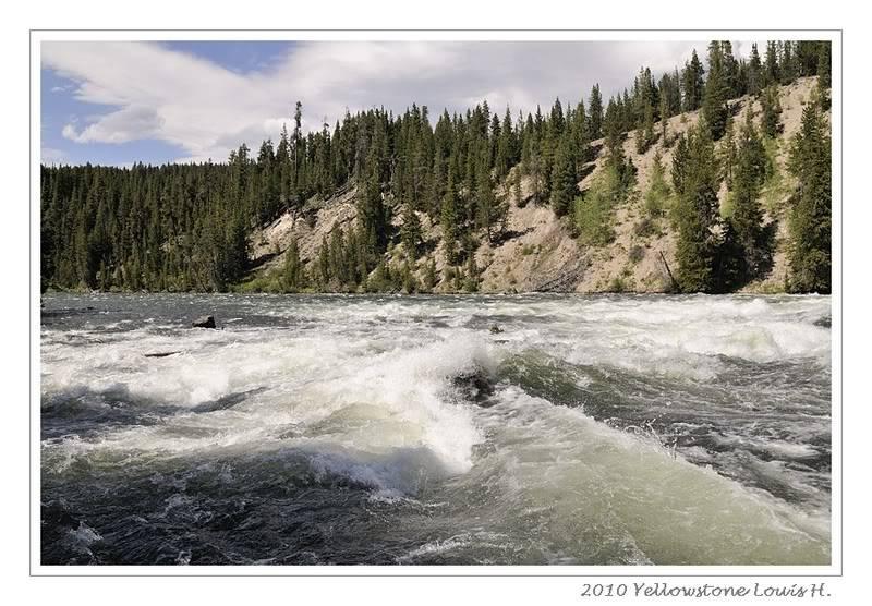 De Grand teton à Glacier en passant par Yellowstone: Partie 2 Yellowstone _DSC6322