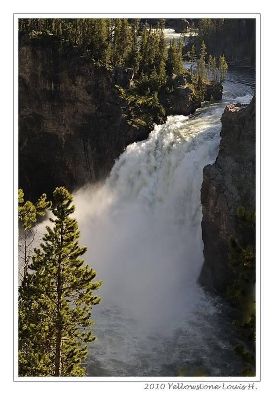 De Grand teton à Glacier en passant par Yellowstone: Partie 2 Yellowstone _DSC6360