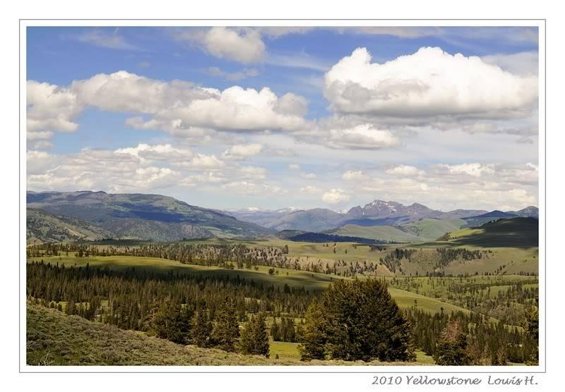 De Grand teton à Glacier en passant par Yellowstone: Partie 2 Yellowstone _DSC6411