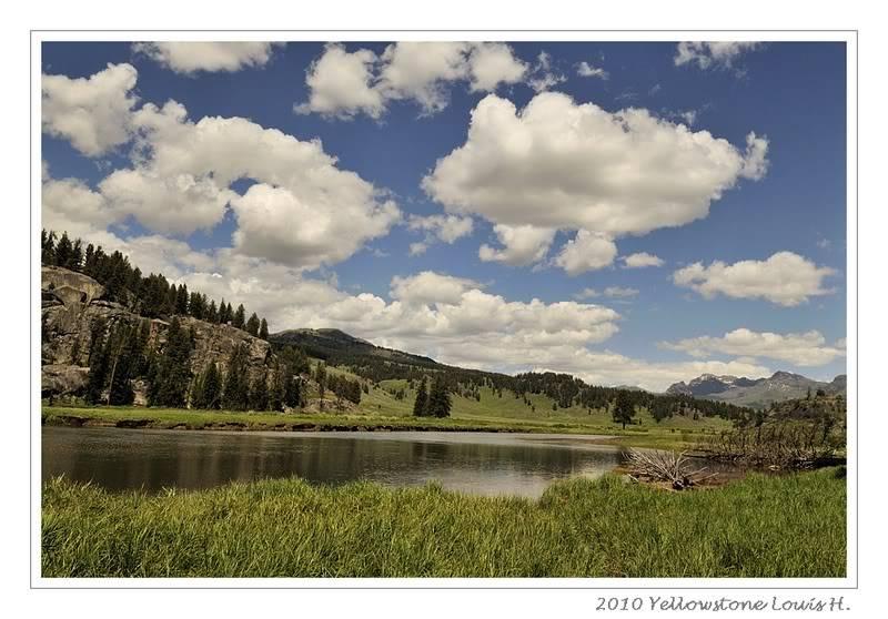 De Grand teton à Glacier en passant par Yellowstone: Partie 2 Yellowstone _DSC6471