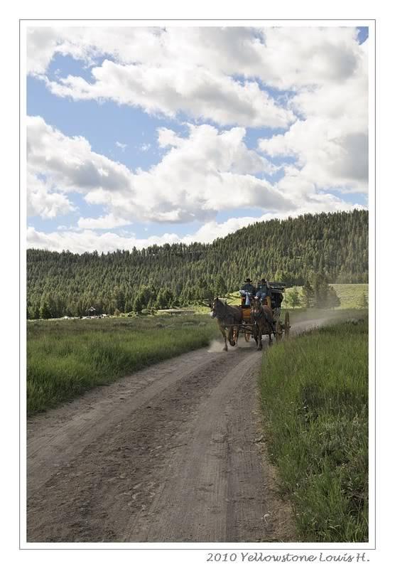 De Grand teton à Glacier en passant par Yellowstone: Partie 2 Yellowstone _DSC6481