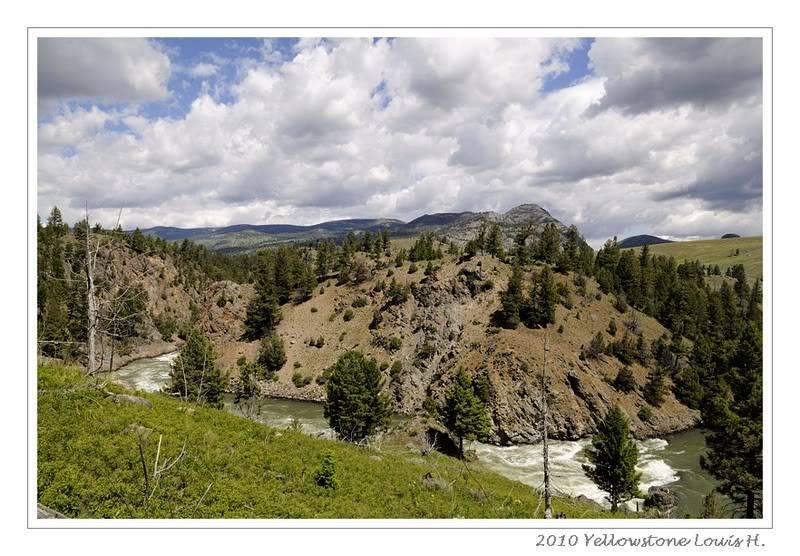 De Grand teton à Glacier en passant par Yellowstone: Partie 2 Yellowstone _DSC6490