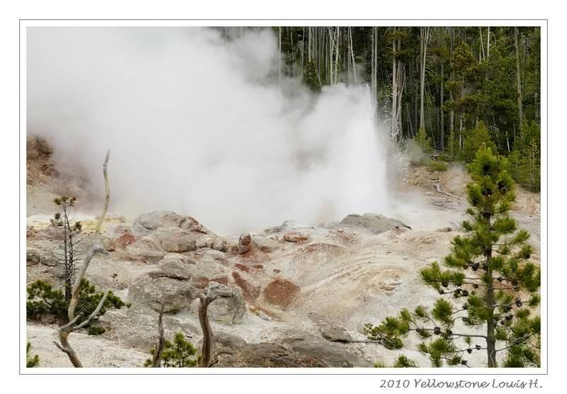 De Grand teton à Glacier en passant par Yellowstone: Partie 2 Yellowstone _DSC6526