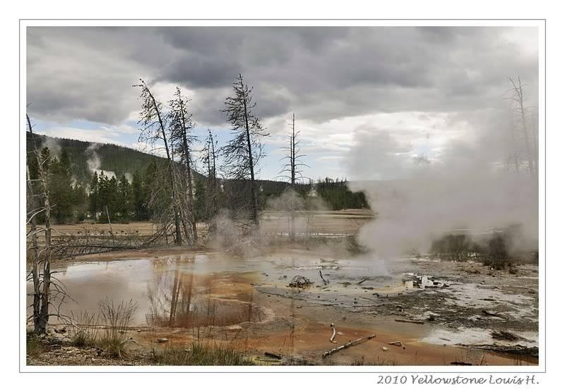 De Grand teton à Glacier en passant par Yellowstone: Partie 2 Yellowstone _DSC6560