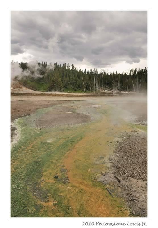 De Grand teton à Glacier en passant par Yellowstone: Partie 2 Yellowstone _DSC6566