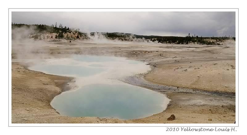 De Grand teton à Glacier en passant par Yellowstone: Partie 2 Yellowstone _DSC6568