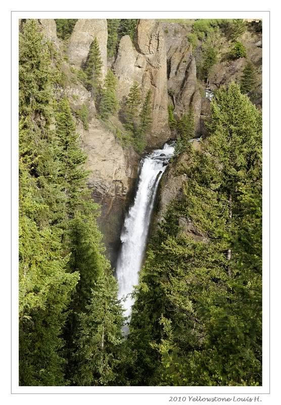 De Grand teton à Glacier en passant par Yellowstone: Partie 2 Yellowstone _DSC6586_1-1