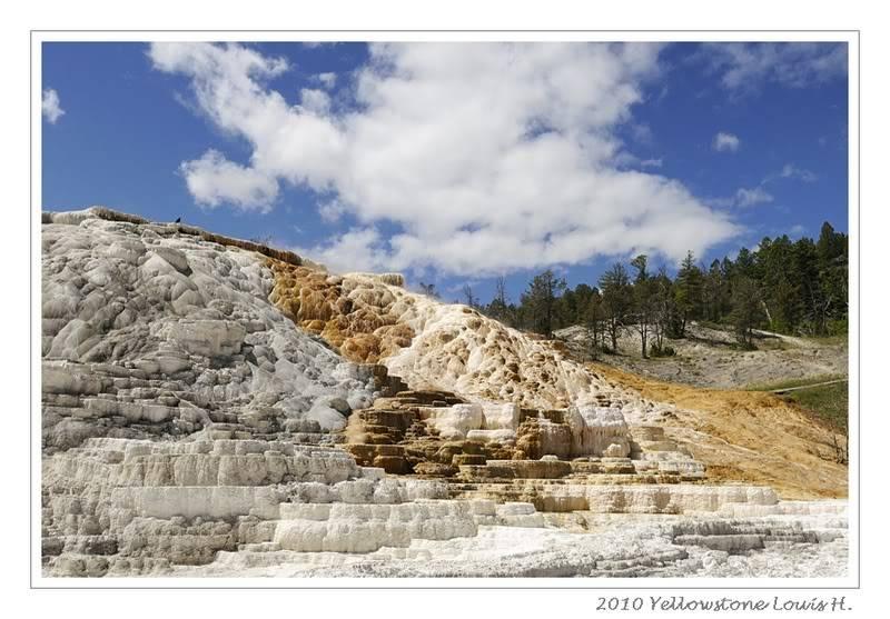 De Grand teton à Glacier en passant par Yellowstone: Partie 2 Yellowstone _DSC6626
