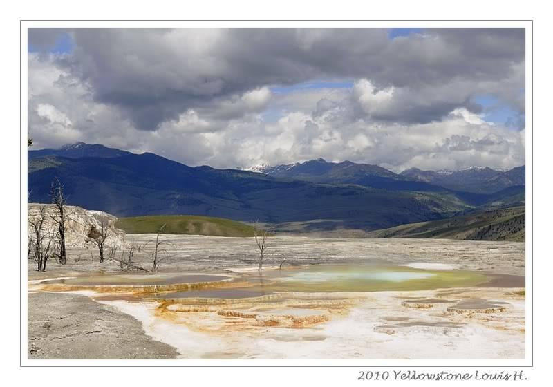 De Grand teton à Glacier en passant par Yellowstone: Partie 2 Yellowstone _DSC6643