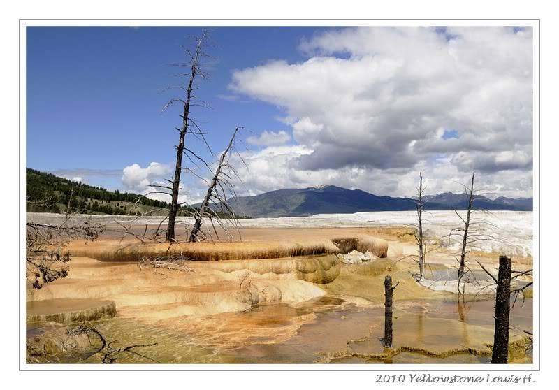 De Grand teton à Glacier en passant par Yellowstone: Partie 2 Yellowstone _DSC6654