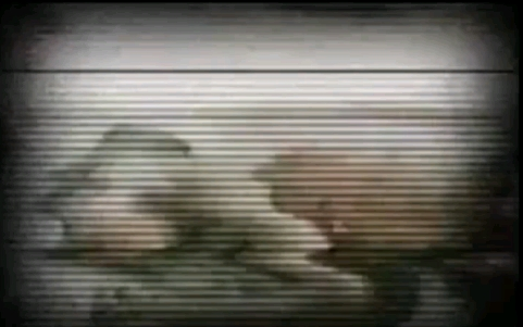 Bob Esponja : El suicidio de calamardo (capitulo perdido) - Página 3 Calamardo3_zps744da5d7