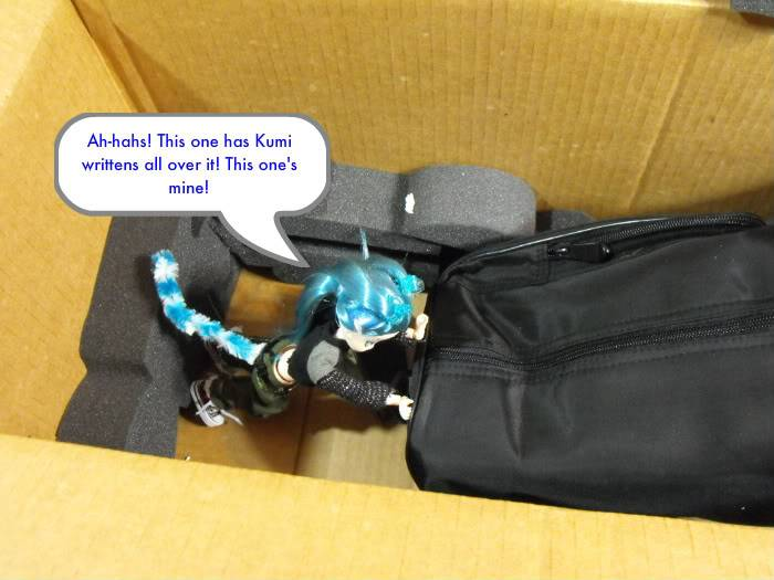 Kumi's Tails - The Delivery (Deboxing Enarra) (Doll nudity) Bxenarra-009